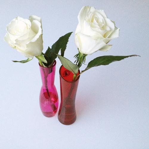 Valentine's-roses1