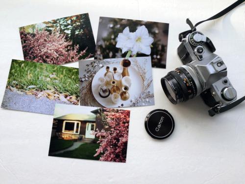 CanonAE-Photos-1