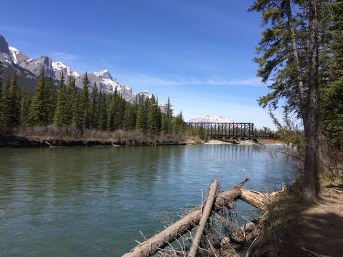 Canmore_cinback_Apr2016-12
