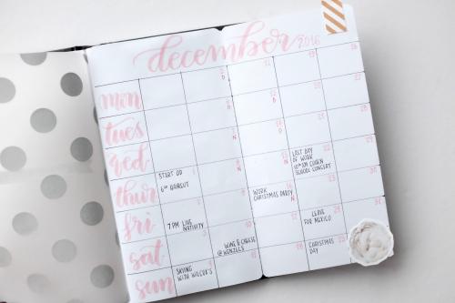 DD2016_cinback_calendarpg 2