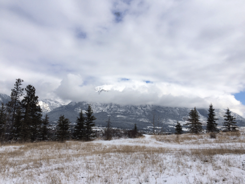 Canmore-Mar2015-4