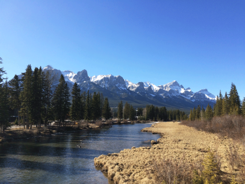 Canmore-Mar2015-1